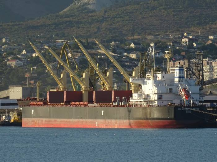 NM Cherry Blossom, now arrested off Port Elizabeth harbour. Picture: Shipspotting/Evgeniy, appearing in Africa PORTS & SHIPS maritime news