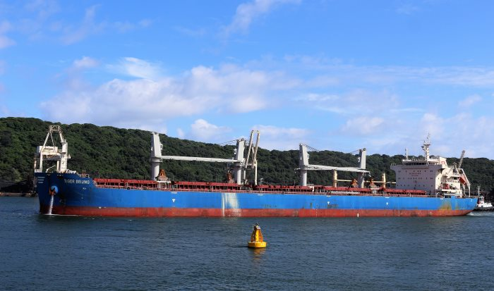 Vialli ex Tiger Beijing. Pictures: Keith Betts, appearing in Africa PORTS & SHIPS maritime news