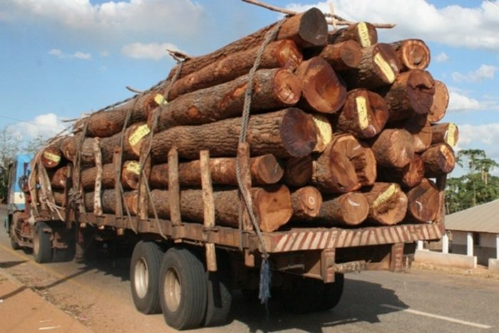 loggingin Mozambique, often illegally, features in Africa PORTS & SHIPS maritime news