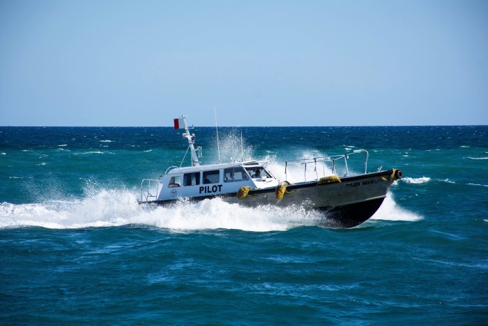 Pilot Boat 5 at Port Everglades, by Tony de Freitas, appraing with a feature in Africa PORTS & SHIPS maritime news