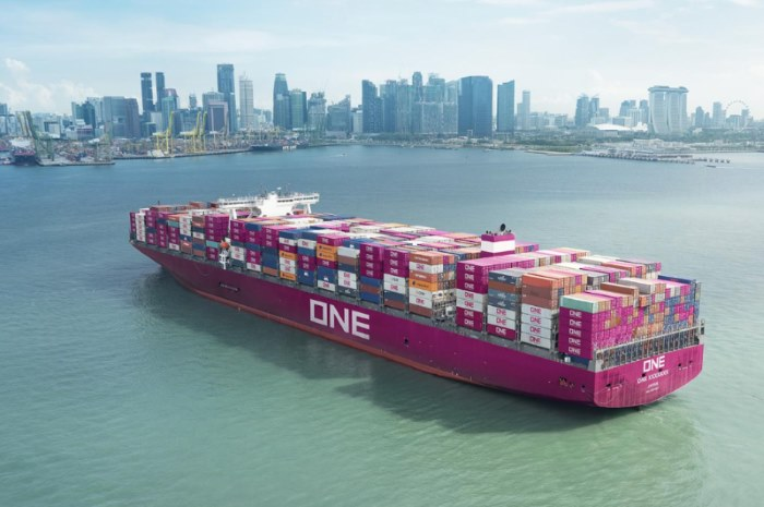 ONE line container ship, appearing in a report carried by Africa PORTS & SHIPS maritime news