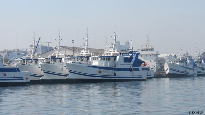EMATUM fleet lying idle in Maputo harbour, featured in Africa PORTS & SHIPS maritime news
