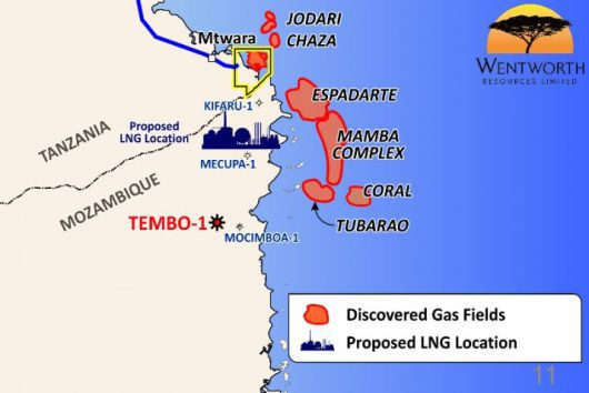 Tembo field in northern Mozambique, being relinquished by Wentworth Resources to concentrate on Tanzania, featured in Africa PORTS & SHIPS maritime news
