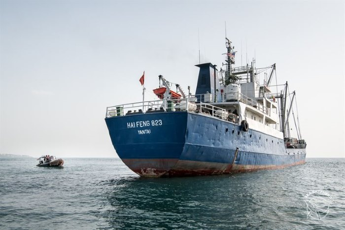 Chinese refrigerated fishing vessel Hai Feng 823, which has been detained in Monrovia, featured in Africa PORTS & SHIPS
