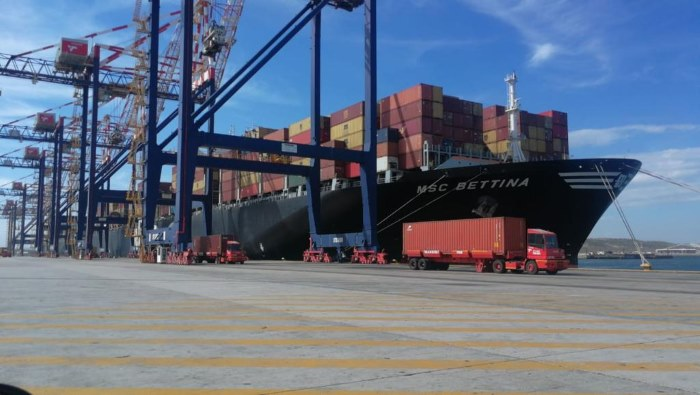 MSC Bettina on her berth at Ngqura Container Terminal, featured in Africa PORTS & SHIPS