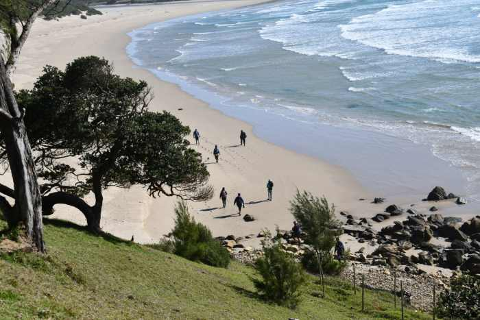 Eastern Cape coastal scene. Picture courtesy: SAMSA, featured in Africa PORTS & SHIPS maritime news