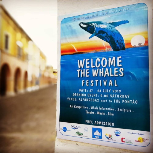 Welcome the Whales Festival poster, featured in Africa PORTS & SHIPS maritime news