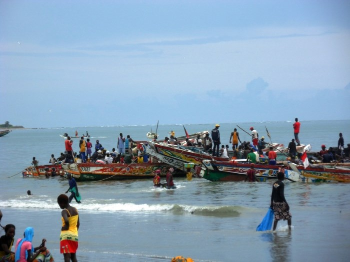 A fishing community and pirogues in Gambia, featured in reports carried in Africa PORTS & SHIPS maritime news