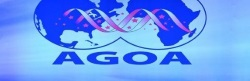 AGOA banner, appearing in Africa PORTS & SHIPS maritime news