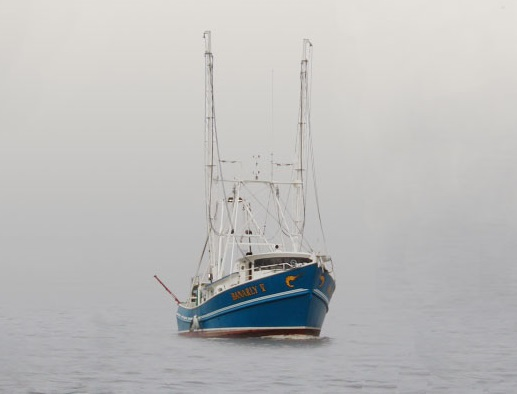 Banarly V, one of the two trawlers arrested for illegal fishing, featured in Africa PORTS & SHIPS maritime news