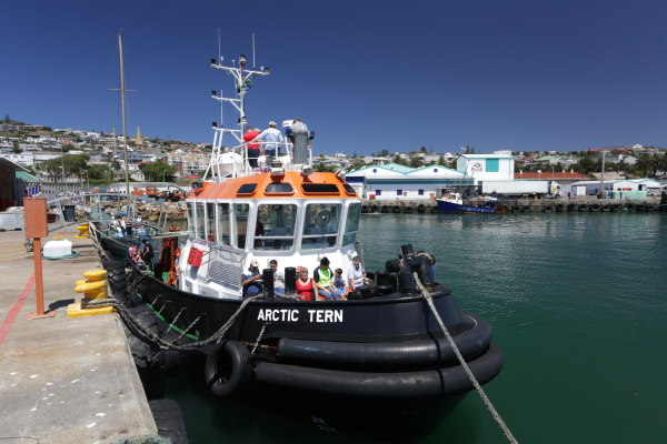 tug rides at Mossel Bay, featured in Africa PORTS & SHIPS maritime news