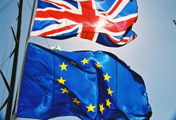 Brexit flags