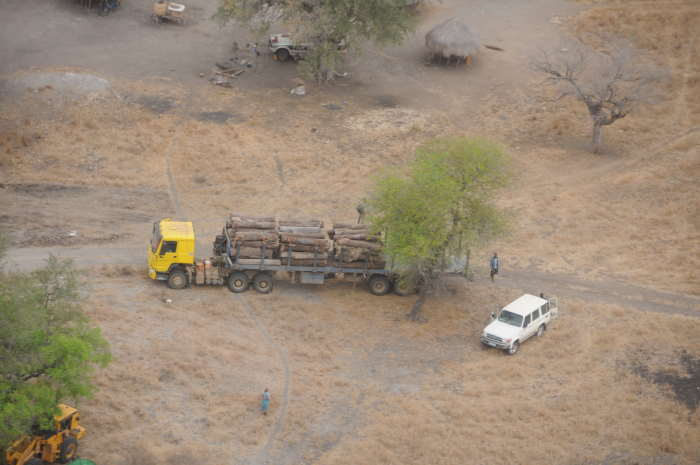 Aerial reconaissance revealed this illegal logging operation involing a fleet of vehicles and equipment. Pictures: Peace Parks Foundation, featured in Africa PORTS & SHIPS maritime news