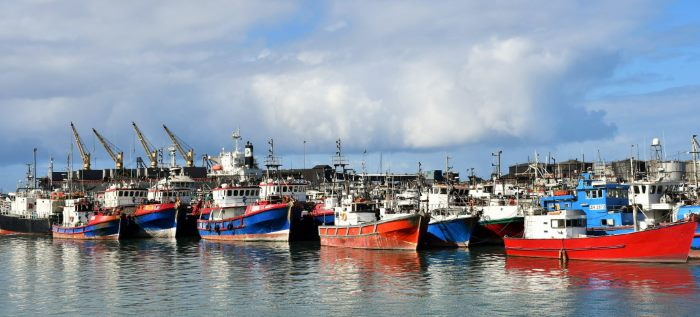 Fishing vessels in Port Elizabeth harbour, featured in Africa PORTS & SHIPS maritime news