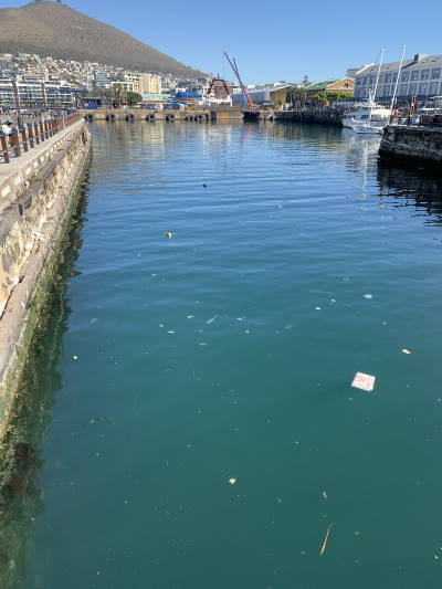 Cape Town's V&A Waterfront with litter polluting the waters of the tourist harbour, featured in Africa Ports & Ships maritime news
