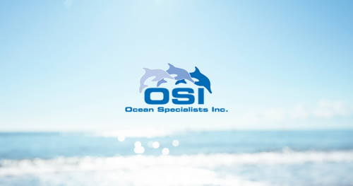 OSI banner, featured in Africa PORTS & SHIPS maritime news