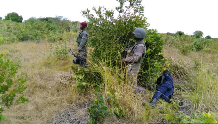 Mozambique security forces in action against terrorists in Cabo Delgado. Picture: Mozambique Ministry of Defence, featured in Africa PORTS & SHIPS maritime news