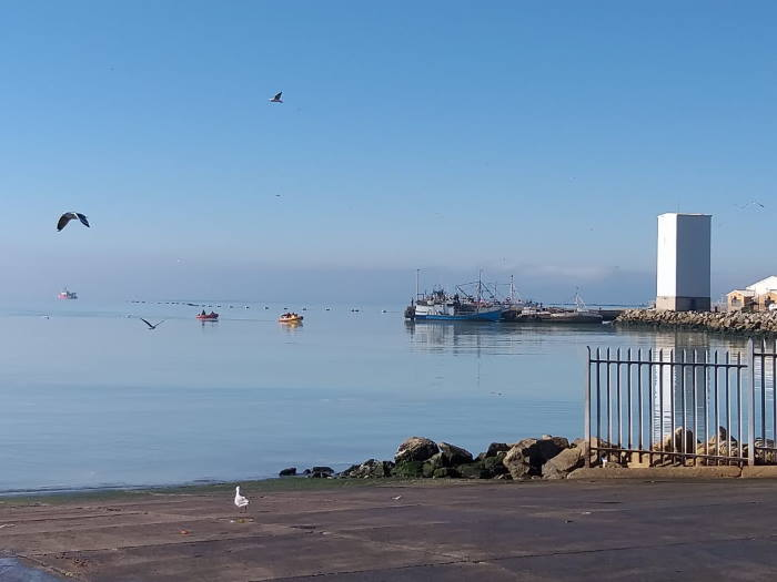 Lamberts Bay harbour, West Coast. It al looks different when the fog rolls in. Picture: NSRI, featured in Africa PORTS & SHIPS maritime news
