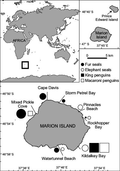 map of Marion Island in the Southern Indian Ocean, featured in Africa PORTS & SHIPS maritime news