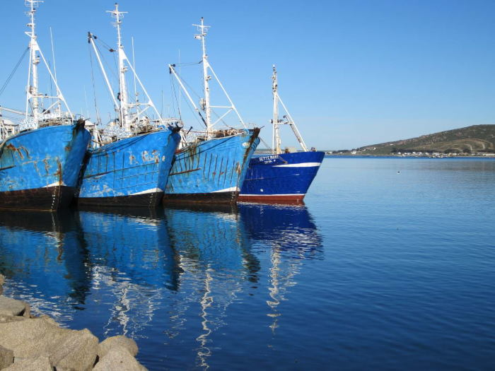 Fishing vessels in St Helena Bay, featured in Africa PORTS & SHIPS maritime news