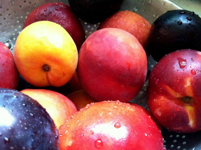 stone fruit bowl, picture credit WordPress, featured in Africa PORTS & SHIPS maritime news