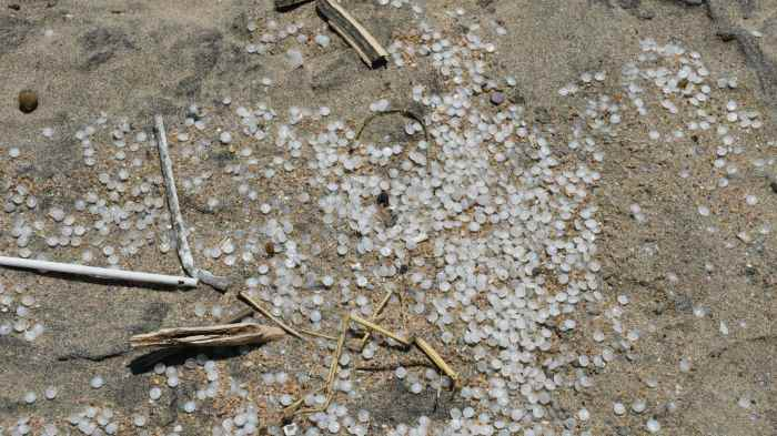 Plastic nurdles in the beachsand, featured in Africa PORTS & SHIPS maritime news