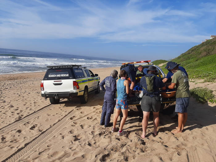 Loading a distressed elephant seal into the all-terrain vehicle at Garvies Beach in Durban. Picture: NSRI, featured in Africa PORTS & SHIPS maritime news